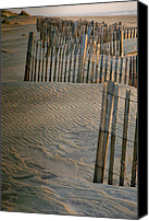 Fences Canvas Prints - Hatteras Dune Fences Canvas Print by Steven Ainsworth