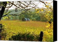 Rural Scenes Canvas Prints - Hay Roll Meadow Canvas Print by Michael L Kimble