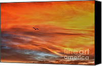 Grey Clouds Digital Art Canvas Prints - hd 413- Sunset Series Lone Seagull Canvas Print by Chris Berry