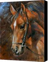 Horse Portrait  Canvas Prints - Head Horse Canvas Print by Arthur Braginsky