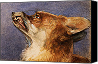 Fox Pastels Canvas Prints - Head of a Fox Canvas Print by John Frederick Lewis
