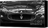 Grill Canvas Prints - Head On Canvas Print by Dennis Hedberg