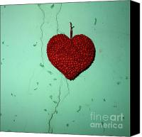 Indoors Inside Canvas Prints - Heart Canvas Print by Bernard Jaubert