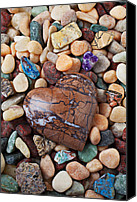 Hearts Photo Canvas Prints - Heart stone among river stones Canvas Print by Garry Gay