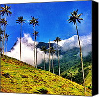 "Featured Canvas Prints - ""heaven"" ~ Salento, Colombia (c) 2012 Canvas Print by Skip Hunt"