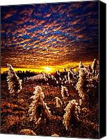 Fall Leaves Canvas Prints - Heaven and Earth Canvas Print by Phil Koch