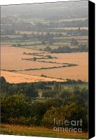 Countryside Photo Canvas Prints - Hedgerows of England Canvas Print by Andy Smy
