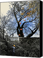 Lamppost Canvas Prints - Her Private Autumn  Canvas Print by Steven  Digman