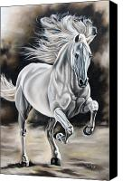 Horse Canvas Prints - Hereje Canvas Print by Ilse Kleyn