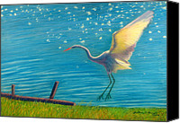 Great Pastels Canvas Prints - Heron Great White   Pastel   Canvas Print by Antonia Citrino