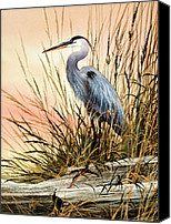 Wildlife Greeting Cards Canvas Prints - Heron Sunset Canvas Print by James Williamson