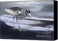 Storm Prints Canvas Prints - Heron taking his afternoon Beach walk Canvas Print by Danuta Bennett