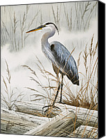 Heron  By James Williamson Painting Canvas Prints - Herons Misty Shore Canvas Print by James Williamson