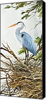 Heron  By James Williamson Painting Canvas Prints - Herons Nest Canvas Print by James Williamson