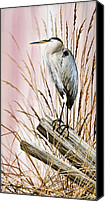 Heron  By James Williamson Painting Canvas Prints - Herons Watch Canvas Print by James Williamson