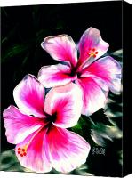 Tropical Beach Drawings Canvas Prints - Hibiscuses Canvas Print by Laura Bell