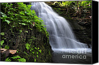 Green Pyrography Canvas Prints - Hidden Waterfalls Canvas Print by Paul Ward