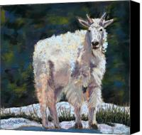 Goat Pastels Canvas Prints - High Country Friend Canvas Print by Mary Benke