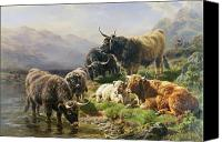 Moor Canvas Prints - Highland Cattle Canvas Print by William Watson