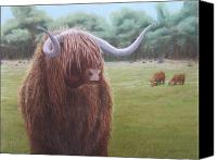 Bull Pastels Canvas Prints - Highlander Canvas Print by Heather Ward