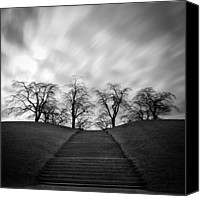 Staircase Canvas Prints - Hill, Stairs And Trees Canvas Print by Peter Levi