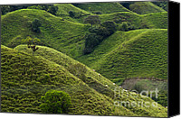 Rural Scenes Photo Canvas Prints - Hills of Caizan Canvas Print by Heiko Koehrer-Wagner