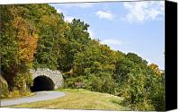 Susan Leggett Canvas Prints - Hillside Tunnel Canvas Print by Susan Leggett