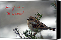 Winter Promise Canvas Prints - His eye is on the sparrow Canvas Print by Linda  Jackson