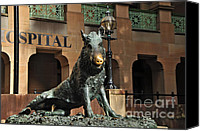 Archways Canvas Prints - Historic Sydney Hospital - Florentine Boar Canvas Print by Kaye Menner