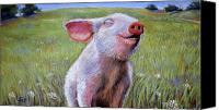 Piglet Canvas Prints - Hog Heaven Canvas Print by Susan Jenkins