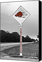 Arkansas Canvas Prints - Hog Sign Canvas Print by Scott Pellegrin