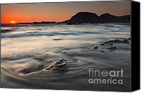 Seal Canvas Prints - Holding Back the Sea Canvas Print by Mike  Dawson