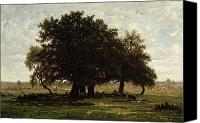 Cow Canvas Prints - Holm Oaks Canvas Print by Pierre Etienne Theodore Rousseau
