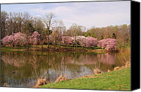 Spring Scenes Canvas Prints - Holmdel Park In Spring Canvas Print by Angie McKenzie