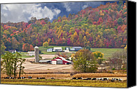 Photos Of Autumn Canvas Prints - Holstein Cattle Farm Canvas Print by Randall Branham