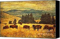 Montana Digital Art Canvas Prints - Home on the Range Canvas Print by Lianne Schneider