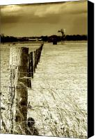 Barbed Wire Fence Canvas Prints - Homeward Bound Canvas Print by Holly Kempe