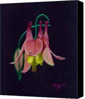 Wild-flower Pastels Canvas Prints - Honeysuckle Canvas Print by Mendy Pedersen