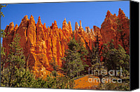 Bryce Canyon Canvas Prints - Hoodoos Along the Trail Canvas Print by Robert Bales