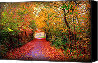 Autumn Canvas Prints - Hope Canvas Print by Photodream Art