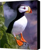 Animal Canvas Prints - Horned Puffin Canvas Print by David Wagner