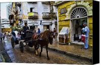 Damp Canvas Prints - Horse and Buggy in old Cartagena Colombia Canvas Print by David Smith