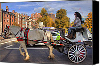 Horse Carriage Canvas Prints - Horse and Carriage Canvas Print by Joann Vitali