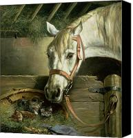 Asleep Painting Canvas Prints - Horse and kittens Canvas Print by Moritz Muller