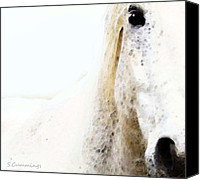 Mare Digital Art Canvas Prints - Horse Art - Waiting For You  Canvas Print by Sharon Cummings