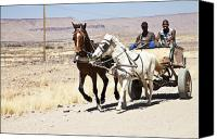 Cart Driving Canvas Prints - Horse Cart Canvas Print by Tamar Toerien