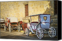 Carriage Canvas Prints - Horse drawn carriages in Guadalajara Canvas Print by Elena Elisseeva