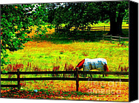 American Saddlebred Art Canvas Prints - Horse Grazing Canvas Print by Annie Zeno