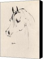 Horse Drawings Canvas Prints - Horse Head Sketch Canvas Print by Angel  Tarantella