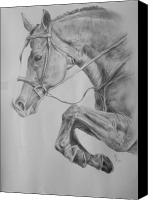 Horse Drawing Canvas Prints - Horse pencil drawing Canvas Print by Arion Khedhiry